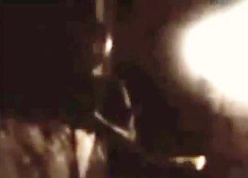 フロリダ州の男性が撮影した侵入者