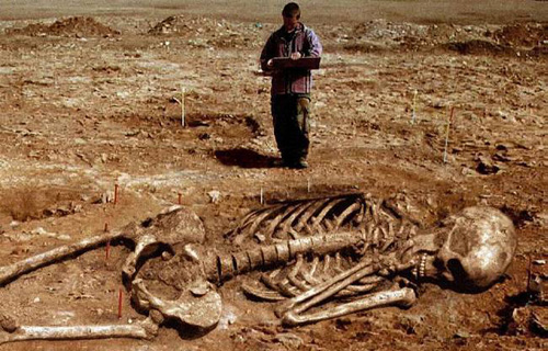 Giant-Human-Skeletons