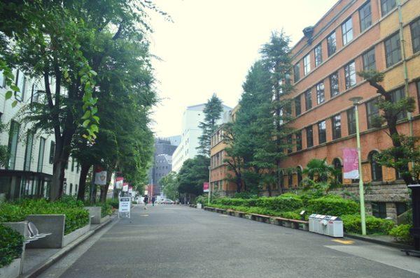 上智大学,春香クリスティーン