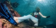 beautiful diver in fish and corals reef background
