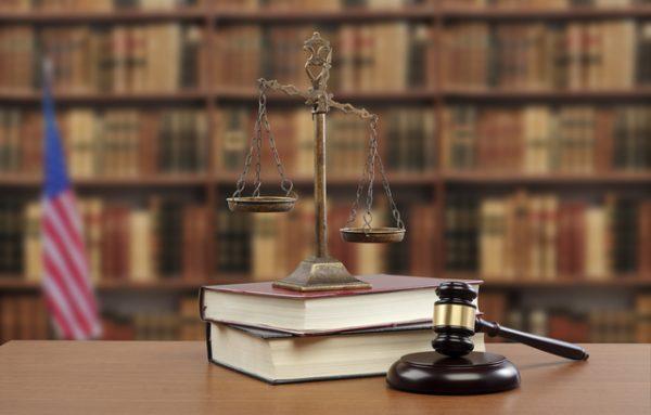 訴訟,アメリカ