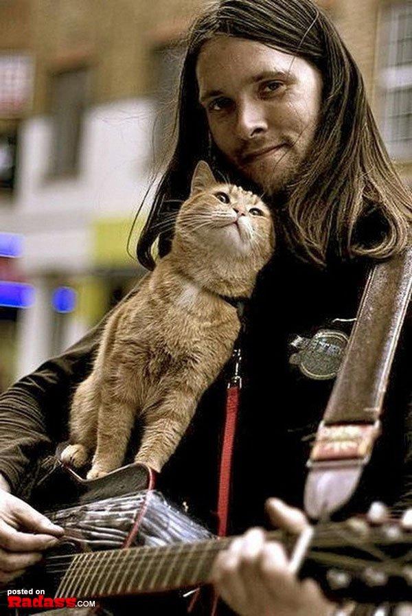 homeless-red-cat-bob-22