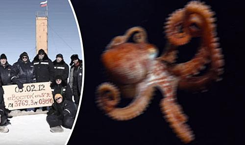 画像は殺人ダコのイメージ画像(右)とロシアの探検隊