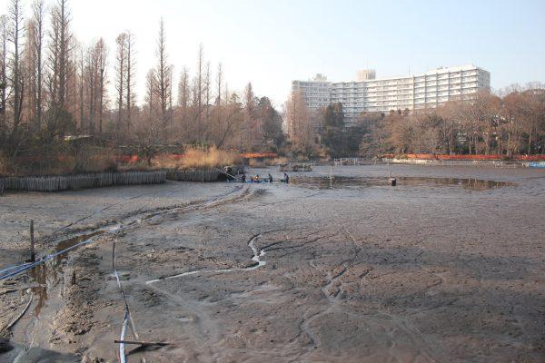 picnicpark / PIXTA(ピクスタ)