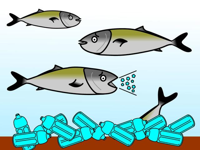 マイクロプラスチック汚染